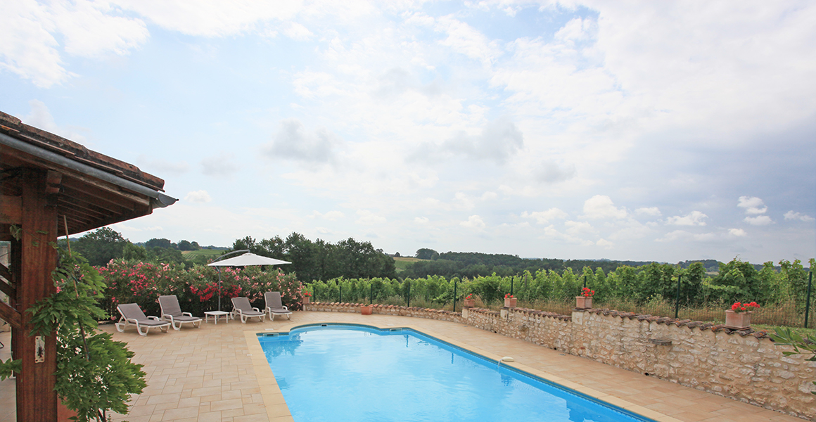 The pool overlooking the vines
